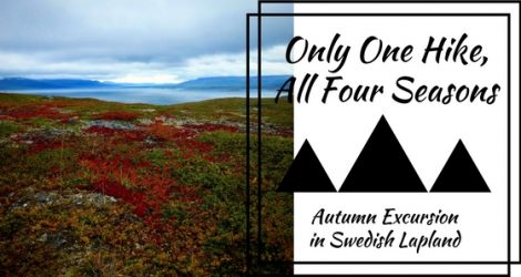 One Hike, Four Seasons – Unforgettable Autumn Excursion In Swedish Lapland