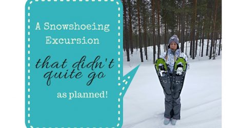 A Snowshoeing Excursion That Didn't Quite Go As Planned