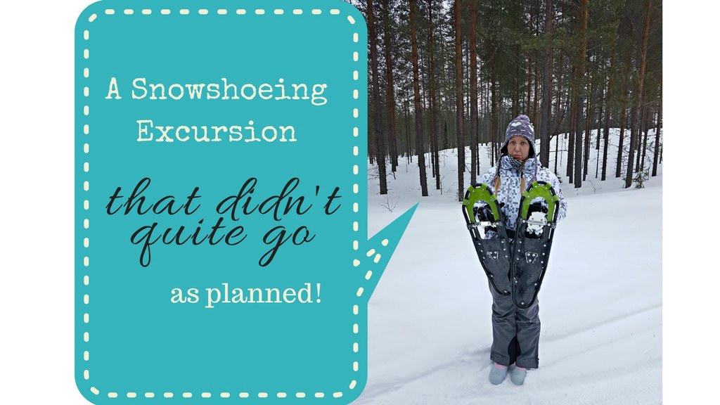 A Snowshoeing Excursion That Didn't Quite Go As Planned | Live Now – Dream Later Travel Blog