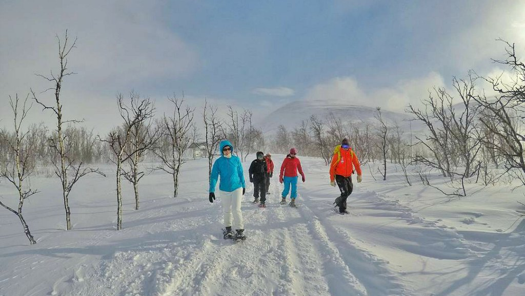 Wintry Swedish Lapland Gives More Than It Takes